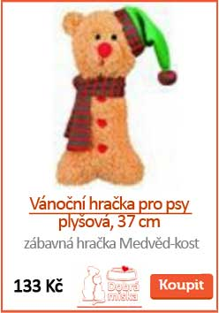 a_vanocni-hracka