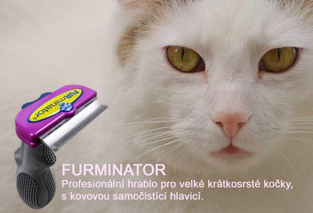 Furminátor pro krátkosrsté kočky