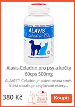 r_alavis-pro-psy-a-kocky