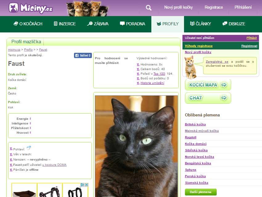 Miciny.cz - profil kočky