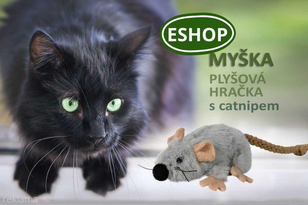 Myška pro kočky s catnipem
