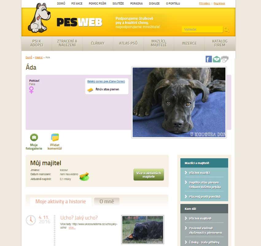 PESWEB.cz - profil psa