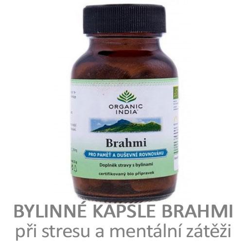 Brahmi - pro paměť a duševní rovnováhu - tablety