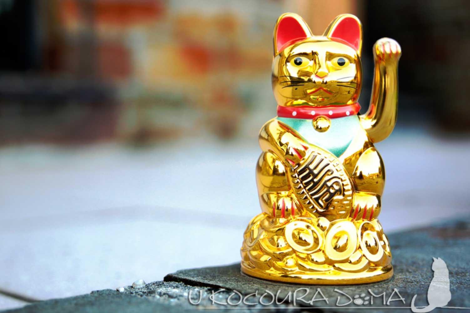 Maneki neko - kočka pro štěstí a bohatství, zlatá kočka