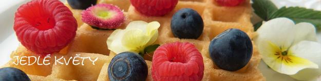 Jedlé květy zpestří každý jídelníček. Ozdobte i ten svůj!