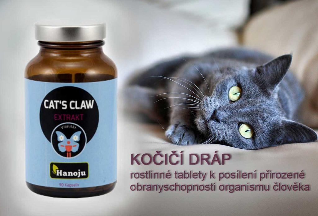 Kočičí dráp - tablety