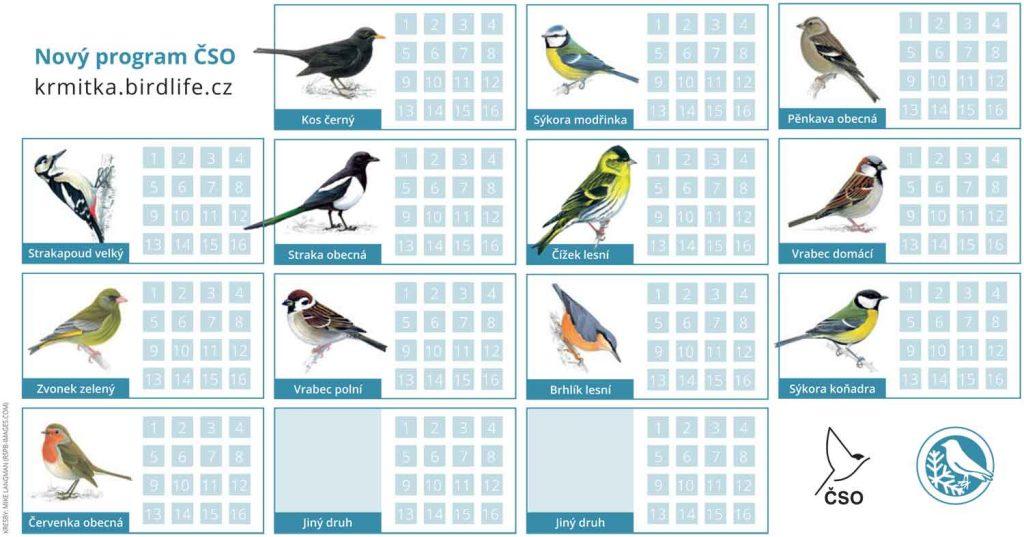 Obrázky opravdu velkých ptáků