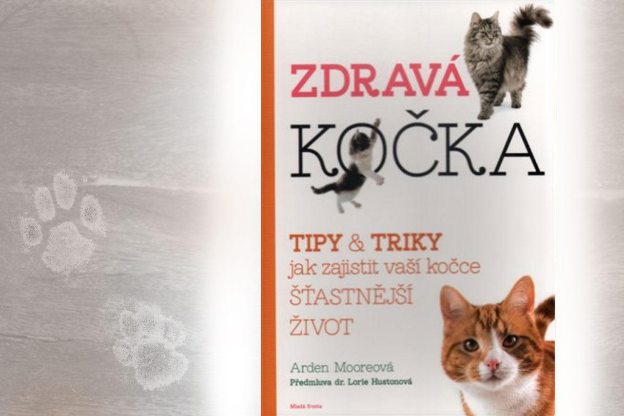 Kniha Zdravá kočka: Tipy a triky, jak zajistit vaší kočce šťastnější život