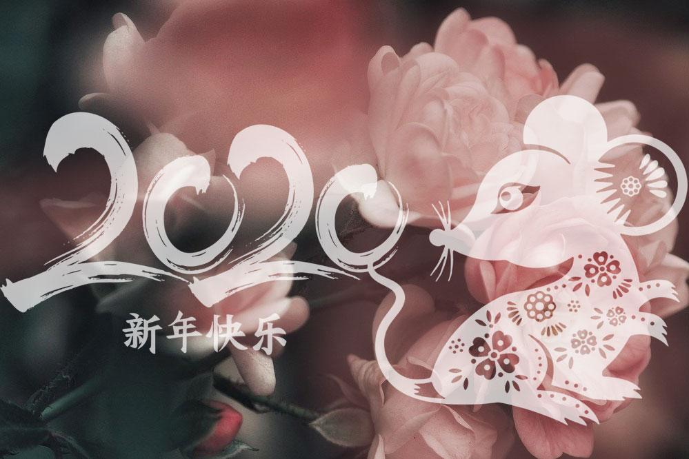 Rok krysy - čínský nový rok